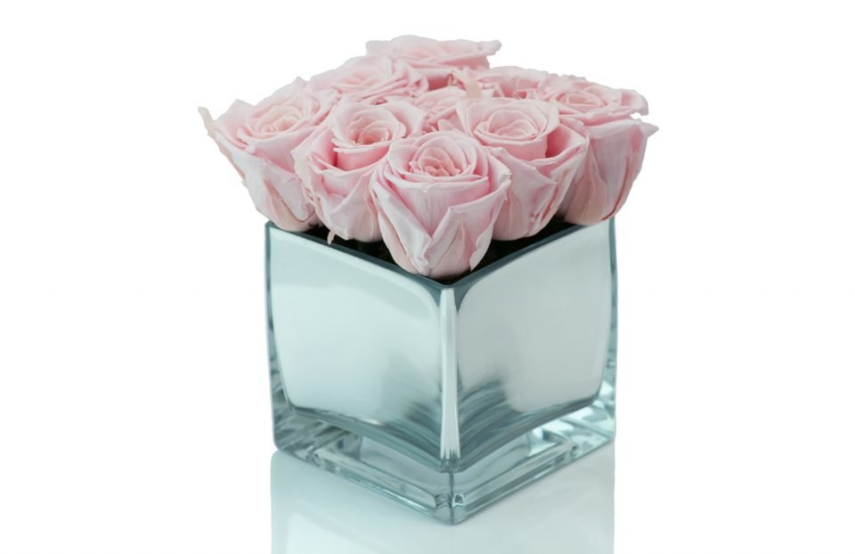 Pink Forever-Roses-in-a-Cube-Vase