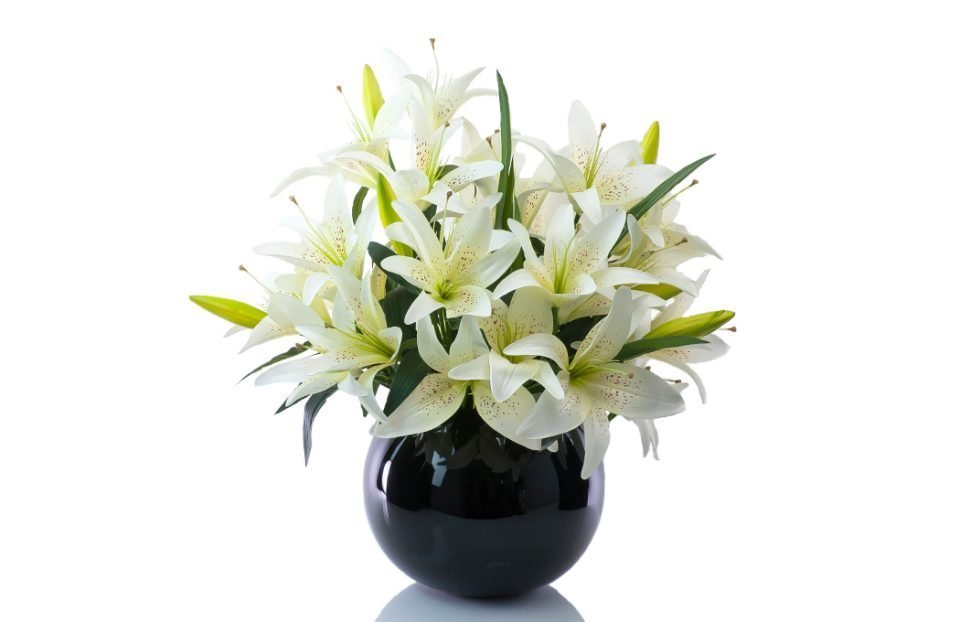 Artificial king cream lily in black fishbowl