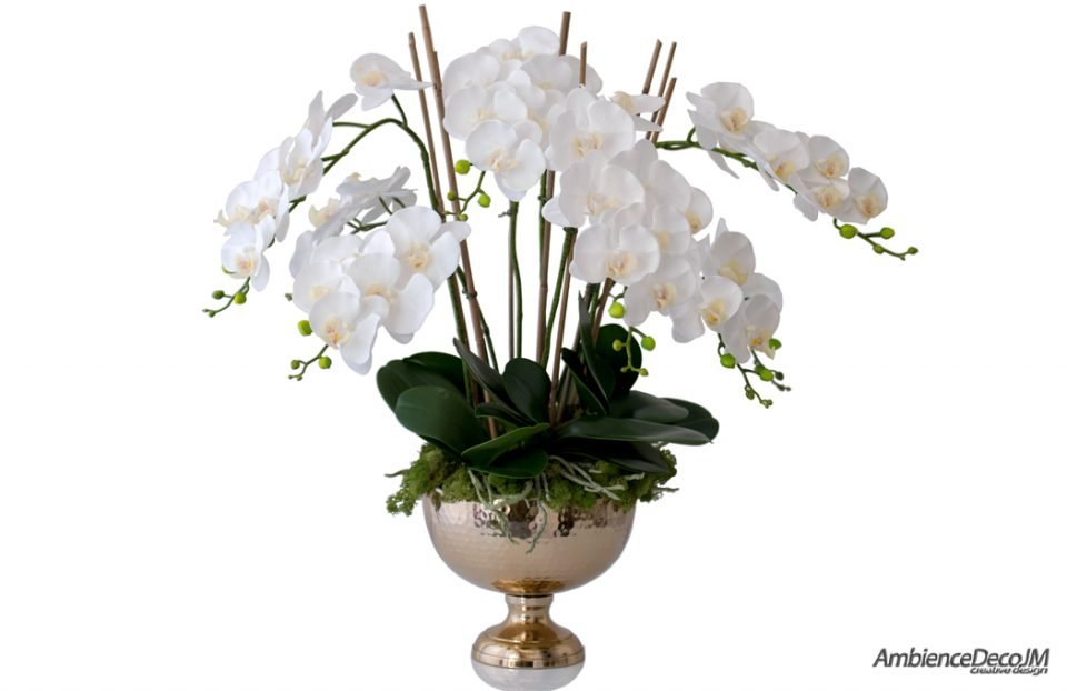 Luxury orchids in a golden vase